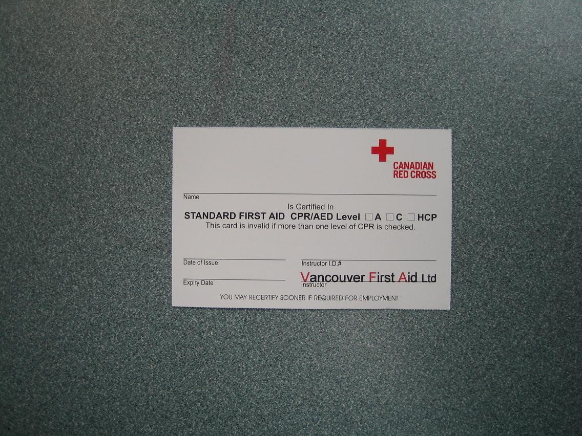 Red Cross Standard First Aid Certificate Vancouver First Aid